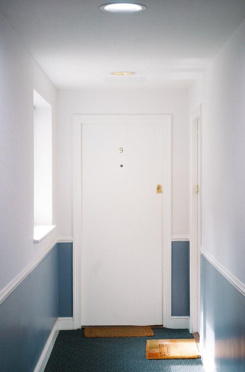 white flush door